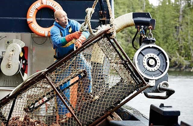 Deadliest catch onboard Alaskan Fly-Cruise