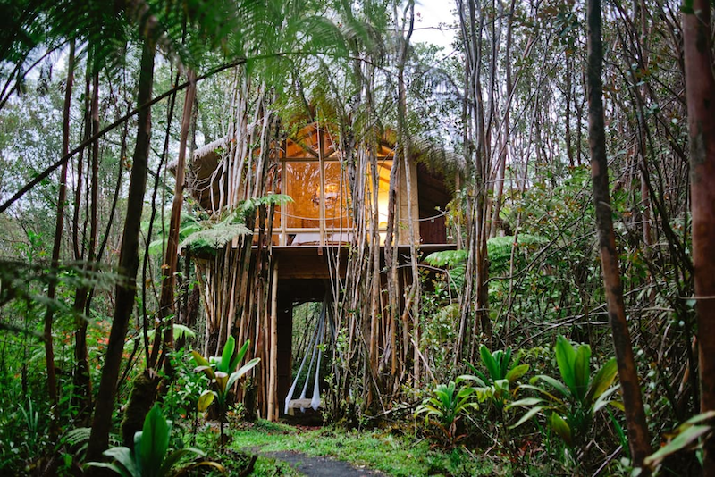 Top 16 Stunning Airbnbs for the Best Experience in Hawaii