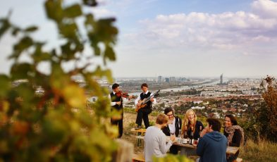 top things to do in vienna