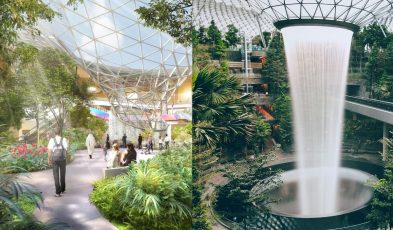 Comparison of Hamad Airport and Changi Airport
