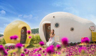 travellers love south korea