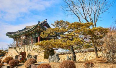 south korea quarantine exemptions