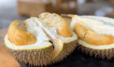 Charging Phones Among Durian Benefits You Might Not Know